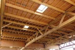 La salorge, le plafond